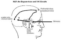 Explaining the neuro in NLP in relation to V-K modalities(click to enlarge)