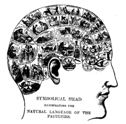Winkin 1990 and Beyerstein 1990 associate NLP with the classic pseudoscience of phrenology